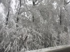 hardegg-winter-5