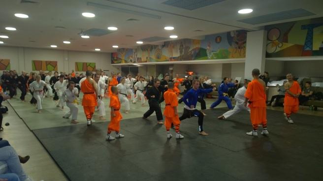 Shaolin Mönche 2