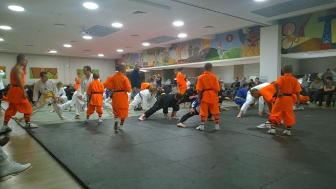Shaolin Mönche 3