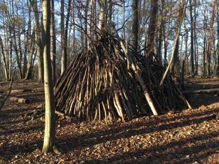NP Thayatal Wohnen im Wald 1