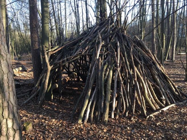 NP Thayatal Wohnen im Wald 2