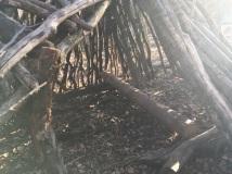 NP Thayatal Wohnen im Wald 3