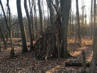 NP Thayatal Wohnen im Wald 5