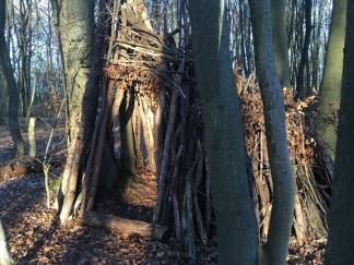 NP Thayatal Wohnen im Wald 6