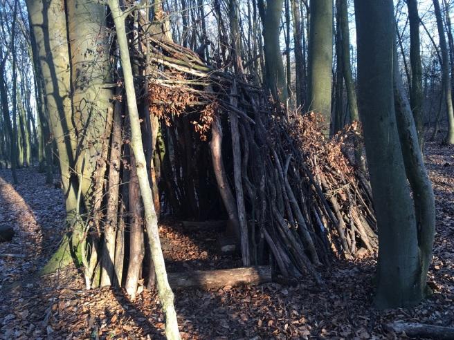 NP Thayatal Wohnen im Wald 7
