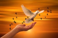 religion-3426159_1280 pixabay