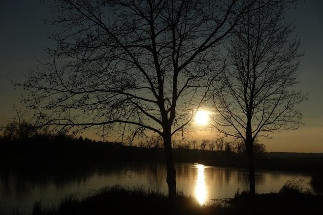 goldene Abendsonne III 1