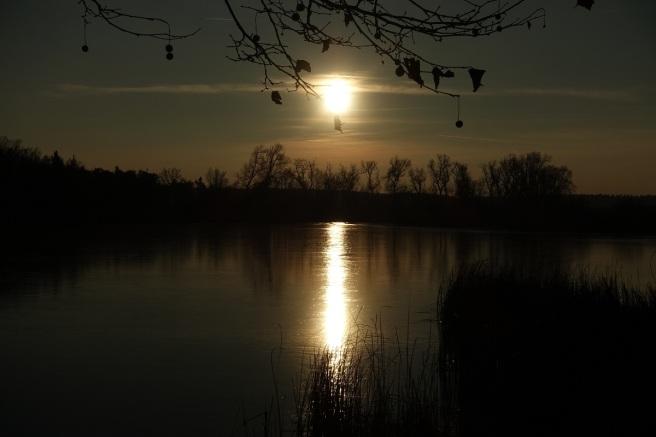 goldene Abendsonne III 2